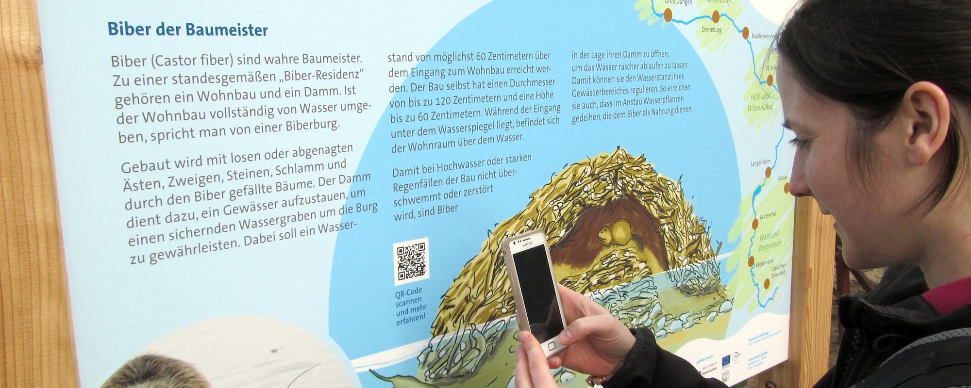 Infotafel am Innerste-Radweg: QR-Code scannen